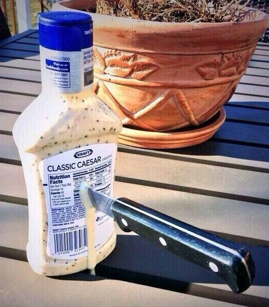 caesar-stabbed